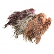 Whiting Spey Hackle Saddle Bronze