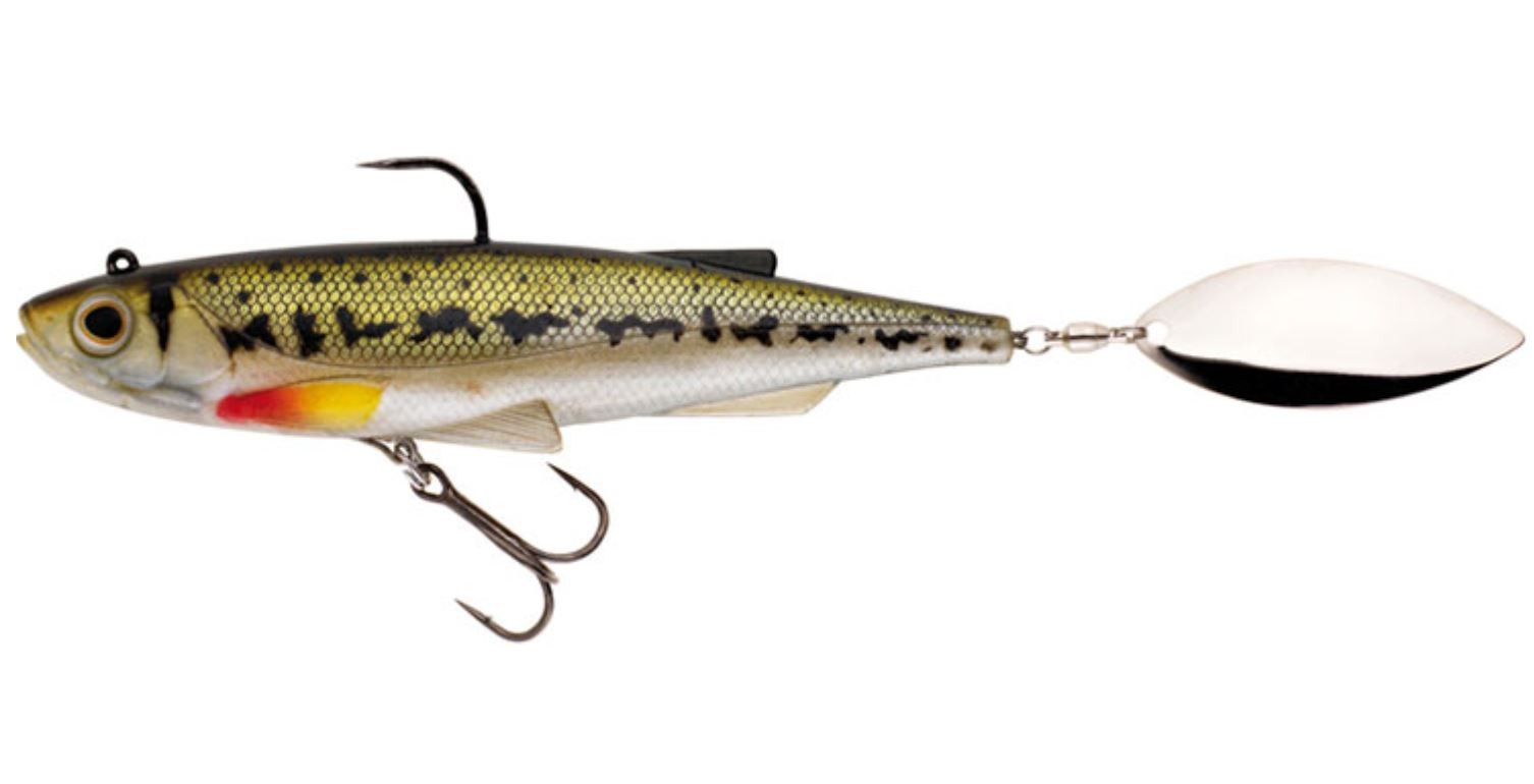 SPINTAIL SHAD GUDGEON