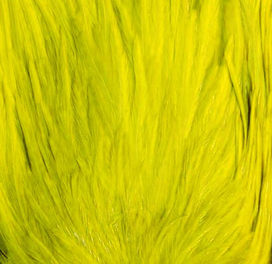 Rooster Saddle YELLOW