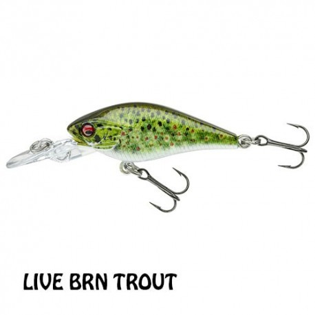 Baby Crank LIVE BRN TROUT